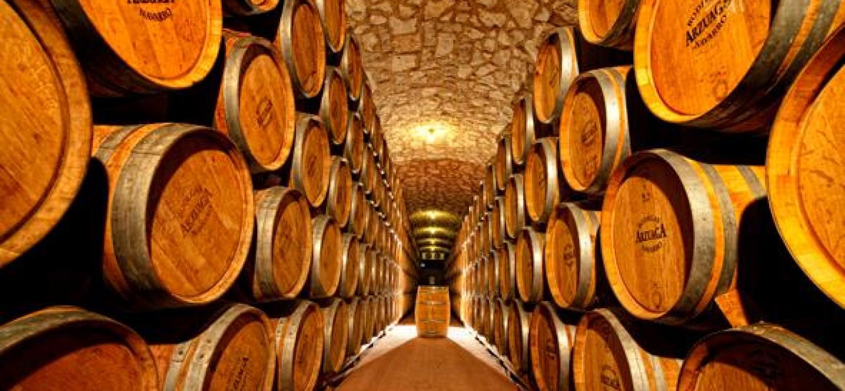 Visita a las bodegas arzuaga destino castilla y le n - Bodegas de vino en valencia ...