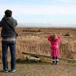 b-birdwatching