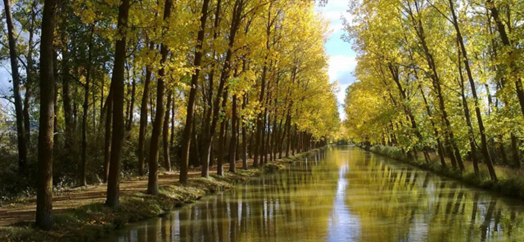 Ruta por el canal de castilla de valladolid a palencia for Oficina turismo castilla y leon