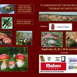"""VI Jornadas de Tapas Micológicas """"Tierras de Sepúlveda"""""""