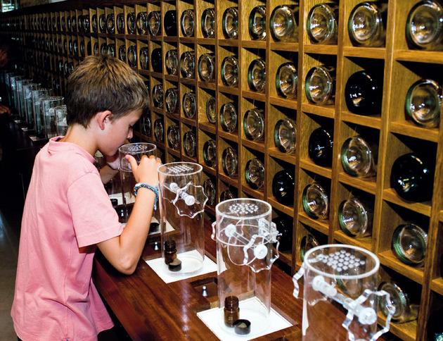 museo del vino de peñafiel-prueba de olores Fuente www.enjoyriberadelduero.com