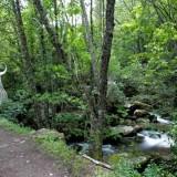 Senderismo por el Camino del Agua entre Mogarraz y Monforte de la Sierra
