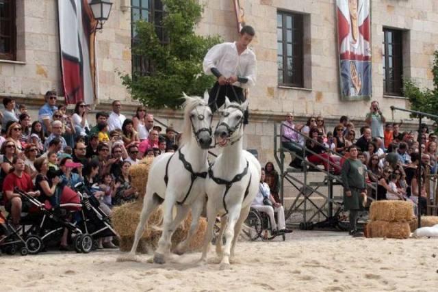 Mercado Medieval de Zamora 2015 - Caballos - Destino Castilla y León