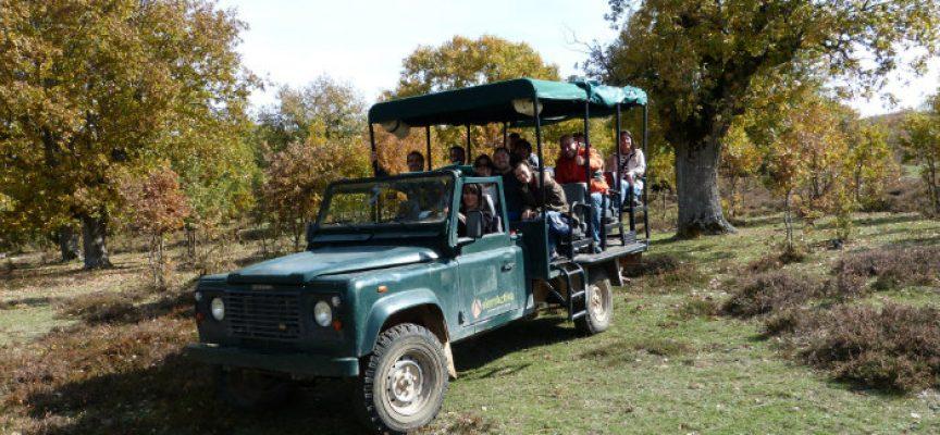 10 planes para viajar con niños en Burgos ¡Serán inolvidables!
