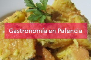Gastronomía en Palencia