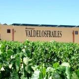 Degustación del vino rosado de Bodegas Valdelosfrailes