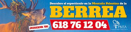 Berrea PNTA 2016