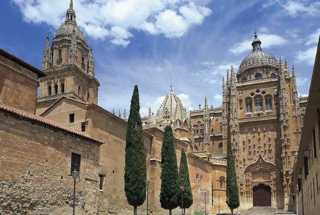 Fachada lateral de la Catedral Nueva de Salamanca - Destino Castilla y León