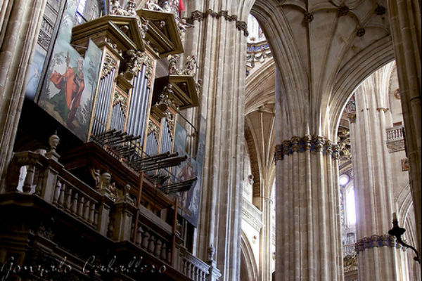 Órgano de la Catedral de Salamanca - Imagen de Gonzalo Caballero