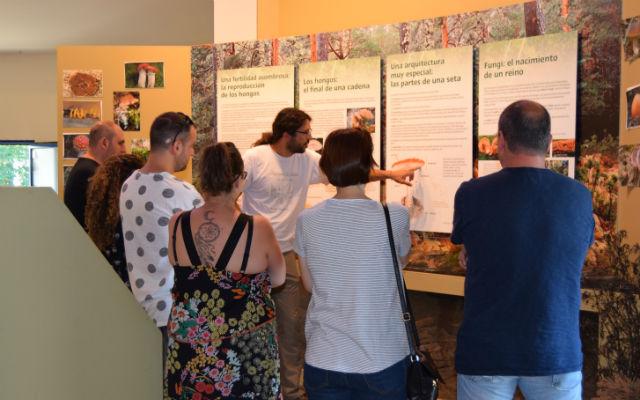 Museo Micológico de Rabanales