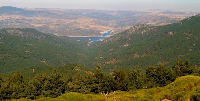 Valle de Iruelas - Imagen de Graellsia