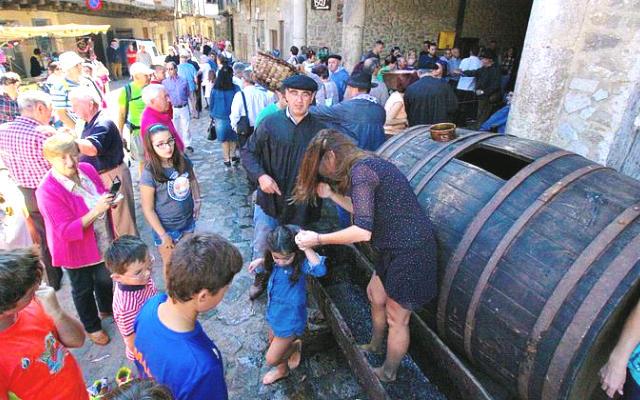 Fiesta de la Vendimia de San Martín del Castañar - Imagen de la Ruta del Vino