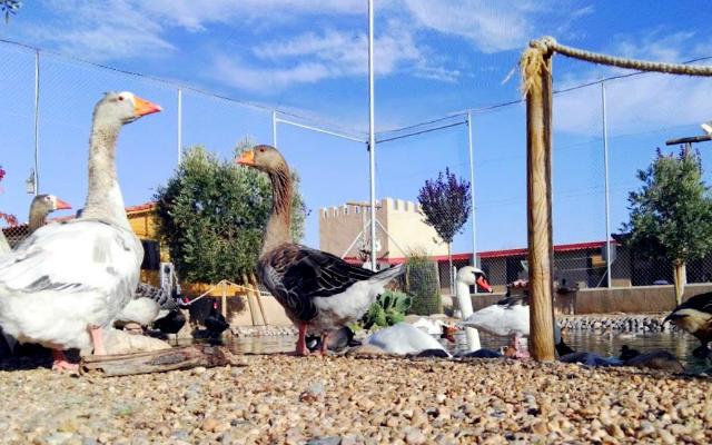 Playa de los patos - Destino Castilla y León