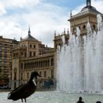 Plaza de Zorrilla, con un pato refrescándose en la fuente - Destino Castilla y León