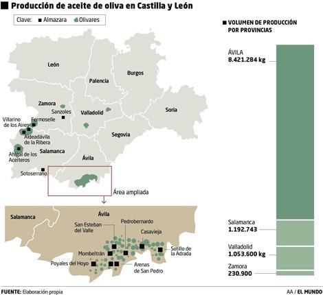 Producción de Aceite de Oliva en Castilla y León