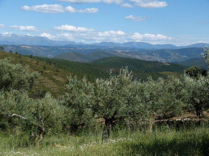 Paisaje de la Sierra de Francia