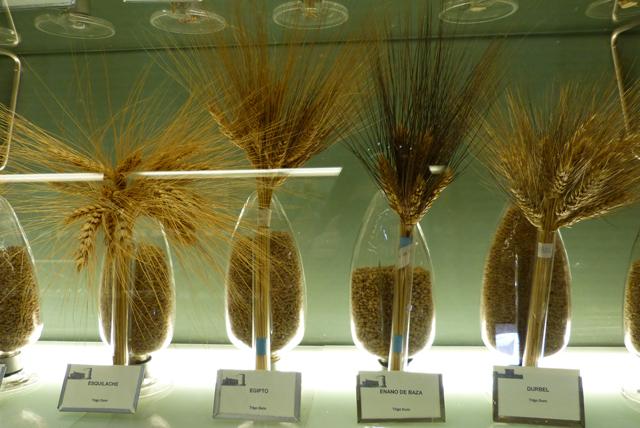 Museo de los cereales en el Castillo de Arévalo en Ávila
