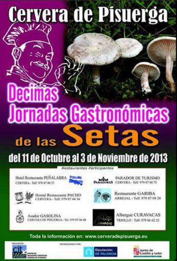 Jornadas Micológicas Cervera de Pisuerga 2013