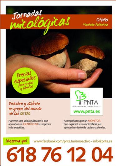 jornadas micológicas en PNTA, montaña palentina