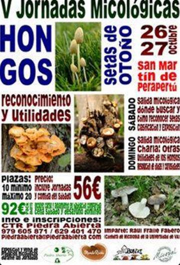 Jornadas micológicas en CTR Piedra Abierta, Palencia