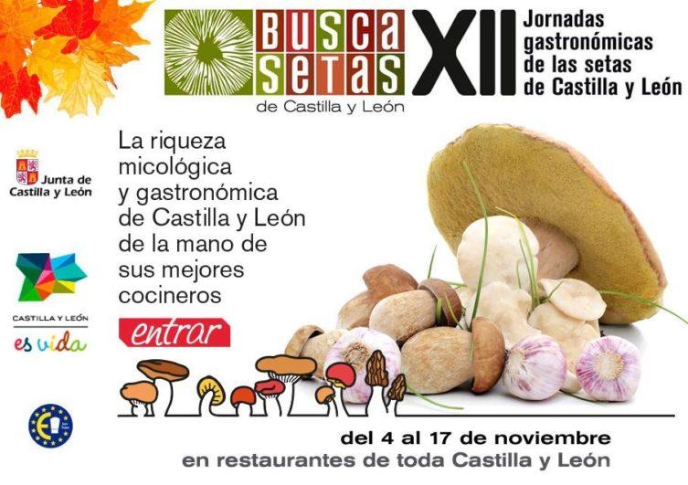 Buscasetas, jornadas gastronómicas de las setas en Castilla y León