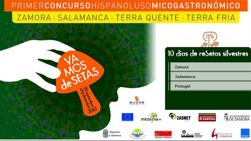I Concurso hispano luso Fuente: http://www.laopiniondezamora.es/