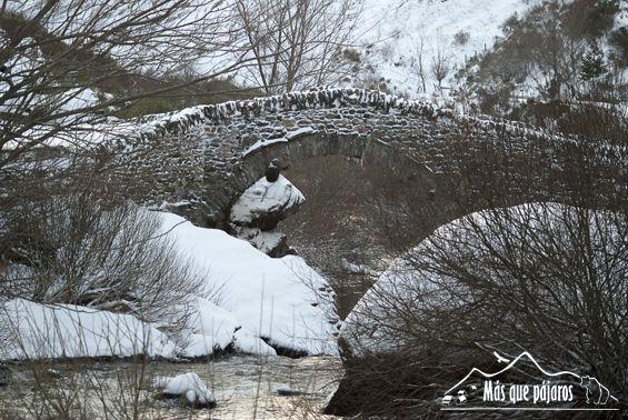 puente romano nevado Fuente Mas que pájaros
