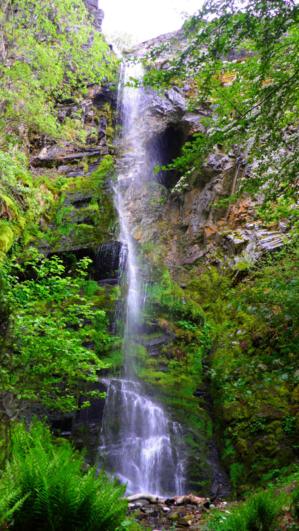 La Cascada Del Gualtón Fuente: http://es.wikiloc.com/