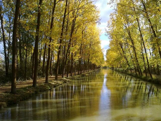 Canal de Castilla en otoño