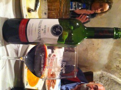 vinos de Señorío de Valdesneros roble