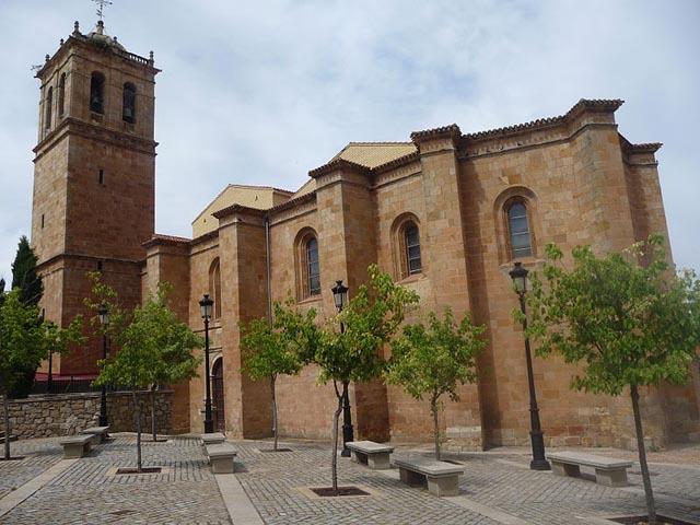 Concatedral San Pedro Soria