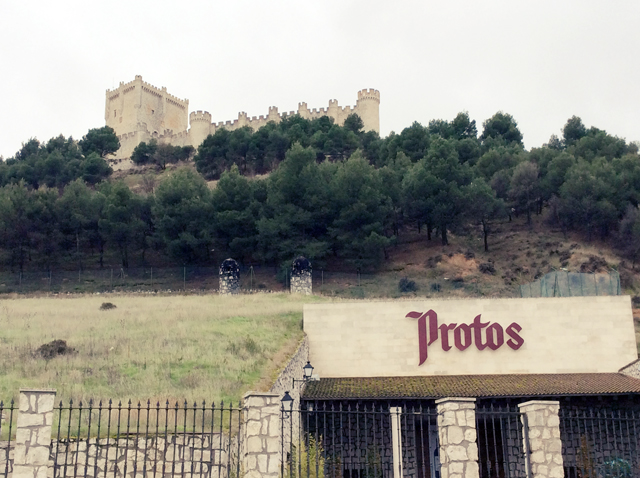 Bodegas Protos junto al Castillo de Peñafiel
