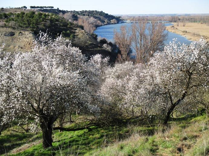 Enoturismo en La Reserva Natural Riberas de Castronuño - Vega del Duero