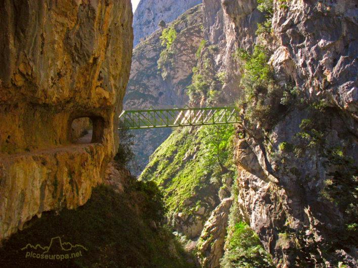 Desfiladero de la Ruta del Cares en los Picos de Europa