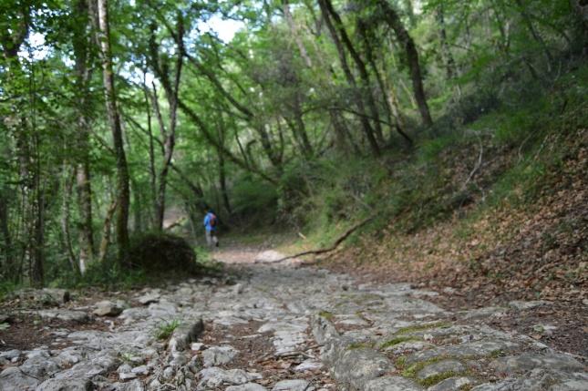 Calzada romana en las Merindades - Destino Castilla y León - Diario de mis paseos