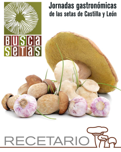 Recetario Buscasetas 2015