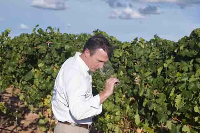 enoturimo en la ruta del vino de Rueda