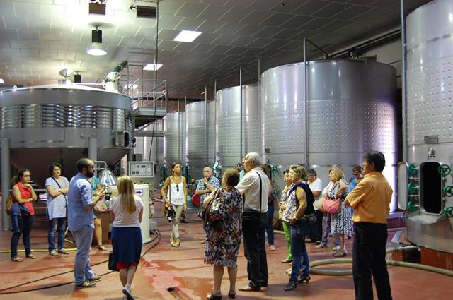 visita guiada a bodega en la ruta del vino de Cigales copy