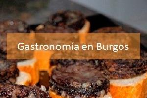 Gastronomía en Burgos