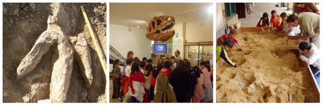 Museo de los Dinosaurios en Salas de los Infantes fuente: www.fundaciondinosaurioscyl.com