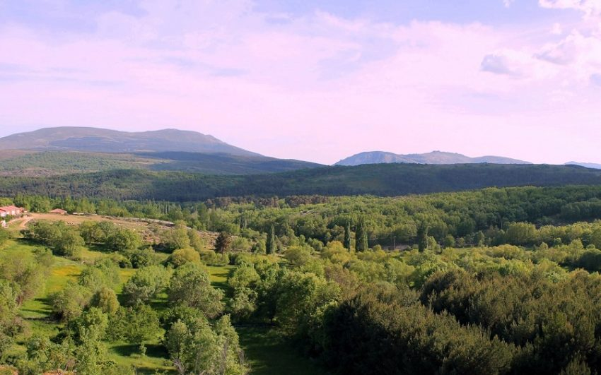 Pinar de Hoyocasero - Destino Castilla y León