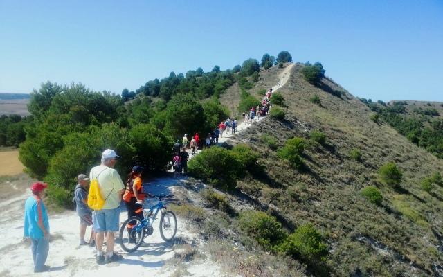 Carrera por el Cerro de Altamira - Fuente Cabezón de Pisuerga