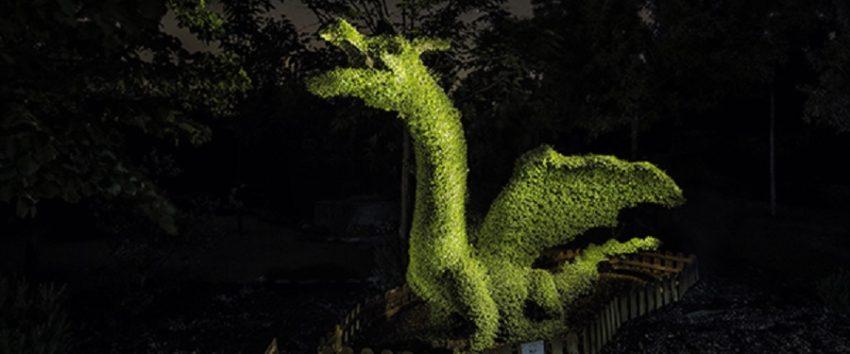 Dragón verde en el Bosque Encantado - Destino Castilla y León