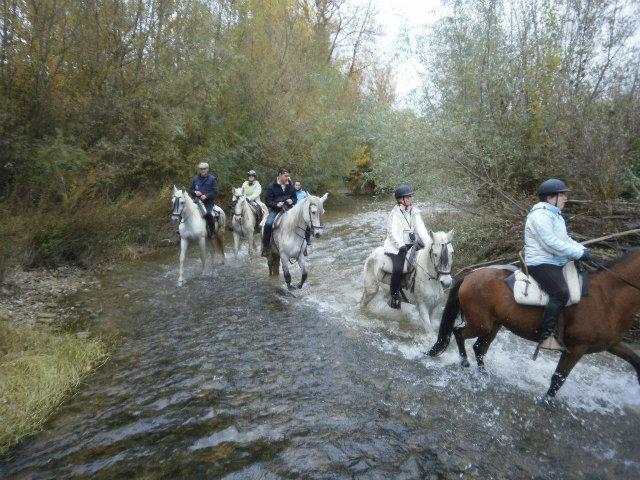 rutas-a-caballo-granja-la-hinojosa