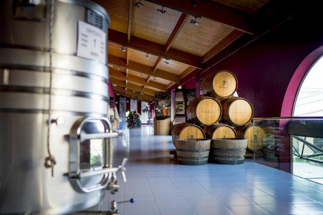 museo-del-vino-emina-ribera-002