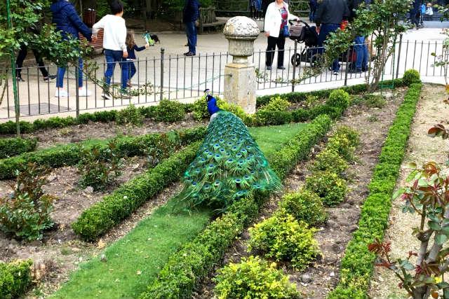 Jardines botánicos de El Campo Grande - Destino Castilla y León