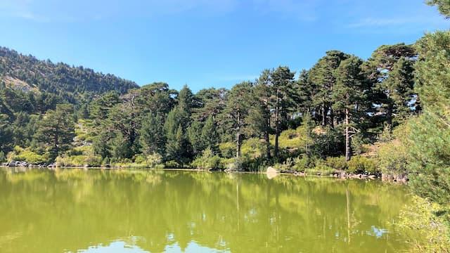 Laguna de los Patos - Destino Castilla y León