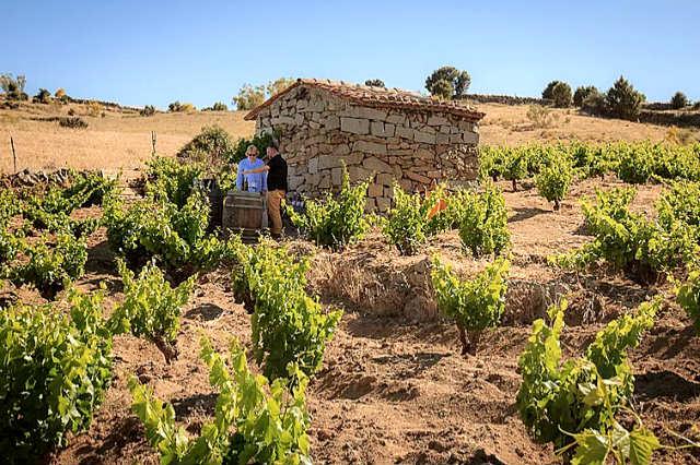 Terruños de Gredos - Imagen de Agustín Trapero