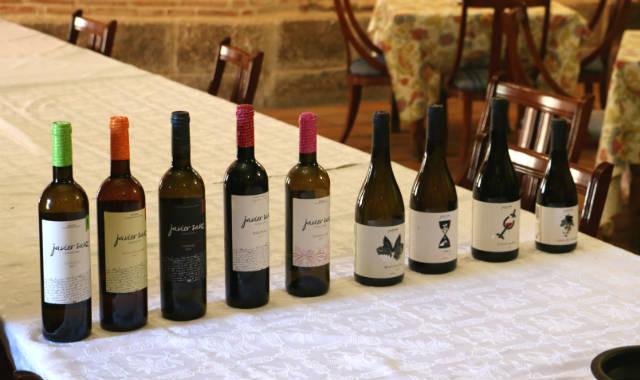Algunos de los vinos de Javier Sanz Viticultor - Destino Castilla y León