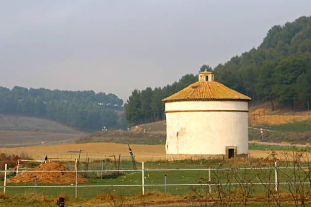 Palomares de la zona de Trigueros del Valle - Destio Castilla y León